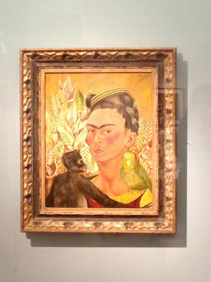 Frida at MALBA.